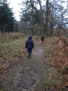Off you go while Mummy works out what on earth she is going to do with Chapter 30. (Picture and children: my own)